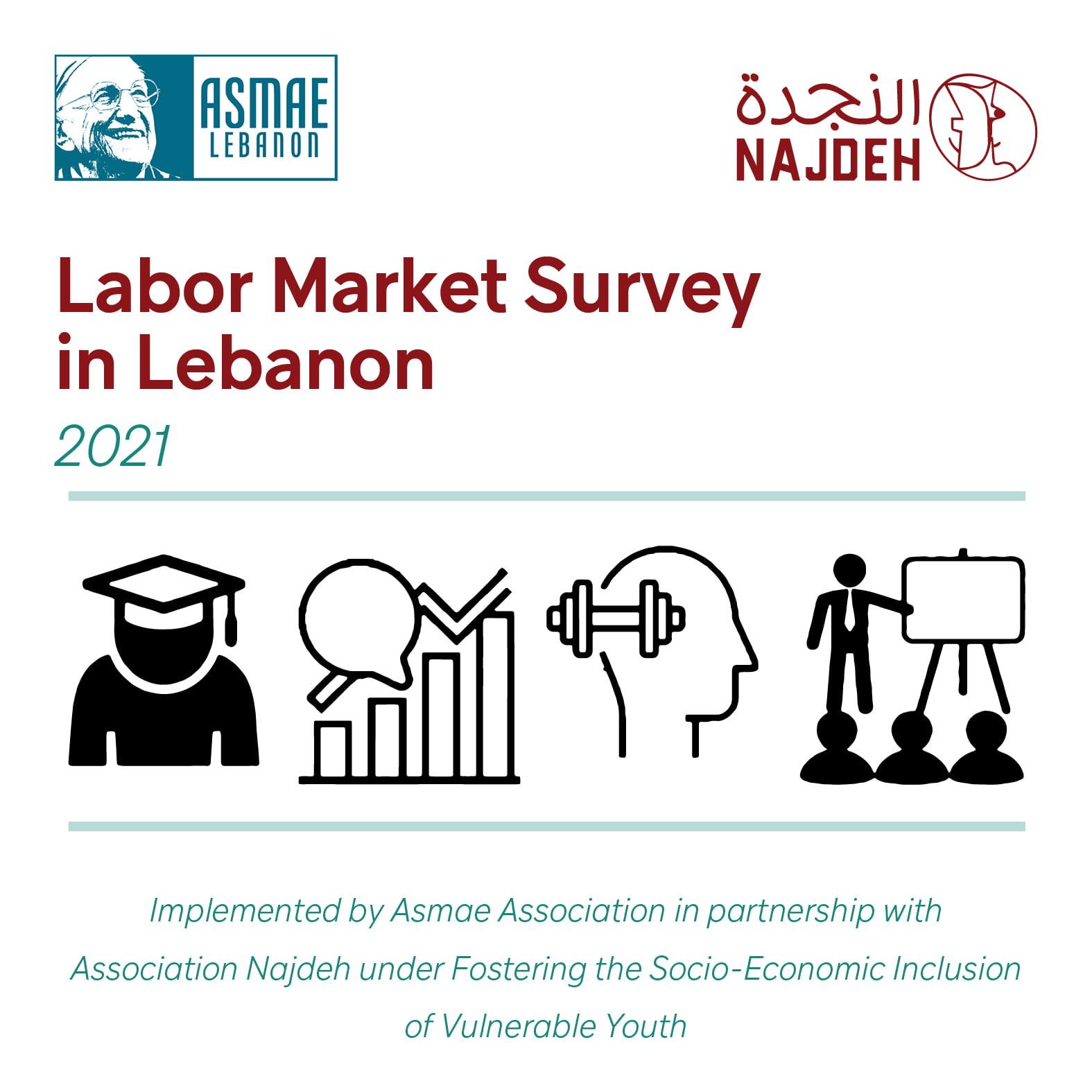 Labor Market Survey in Lebanon